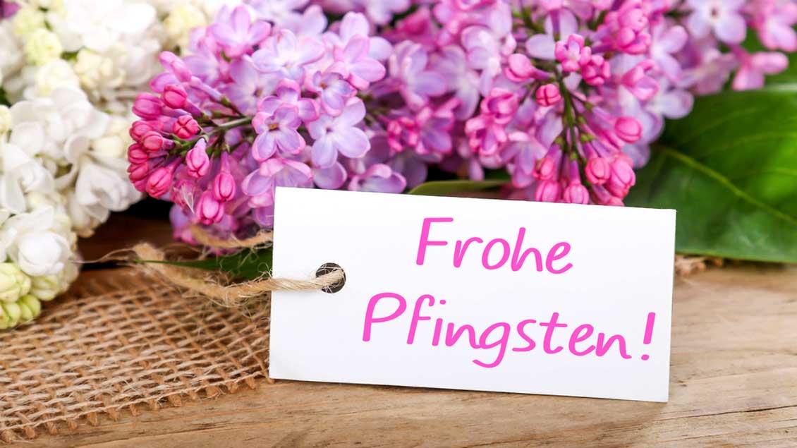 Pfingstgrüße 2021 vom Ortsfischereiverein Hildburghausen